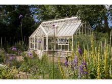 Växthuset och platsen runt omkring