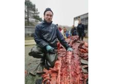 Formidler Lasse Visser i færd med af separere vævet fra knoglerne