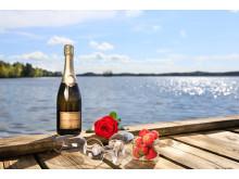 Champagne med strålande sjöutsikt