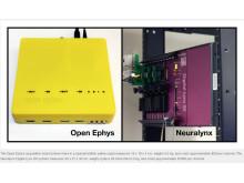 Open Ephys