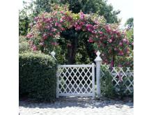 Ny trädgårdsbroschyr från Skåne