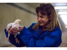 Maria Donis på Kycklinggårdsbesök