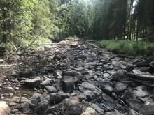 Uttorkat vattendrag