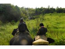 WTG-Weltelefantentag-Patrouille