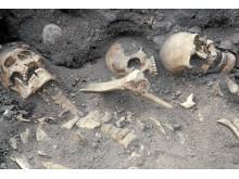 Skelett funna i Riksgropen