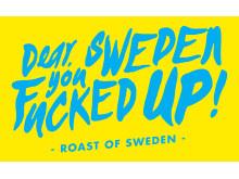 Dear Sweden you fucked up logo