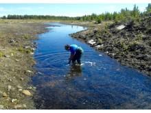 Arifin Sandhi samlar moss- och vattenprover från gruvdriftarealerna i Skelleftefältet, Sverige.