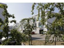 Grønne omgivelser omkring Langagergård Plejecenter
