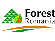 Forest Romania, 16-18 sept 2015