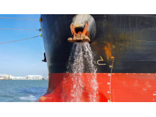 Ballast Water Management Plan