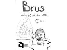 Brus - Curators Anna-Karin Brus och Tomas Bodén 20 oktober 15.00. Affisch: Martina Bjersby.