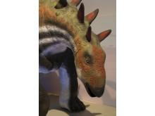 Nya modeller - Chungkingosaurus