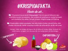 Exempel på #KrispigaFakta i chipstestar-guiden från Estrella