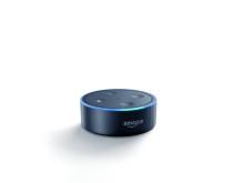Bild: Amazon Echo Dot