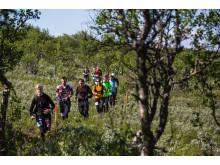 Halvmaraton Fjällmaraton 2015
