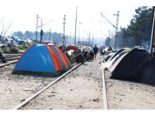 Flygtningelejr i Grækenland