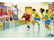 Student-VM 2012 innebandy damer