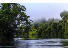 Reseföretaget Världens Resor satsar på ett mer hållbart resande.
