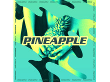 Skaterboy Rico - Pineapple cover