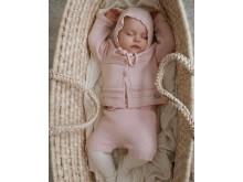 Lillelam/Nyfødt