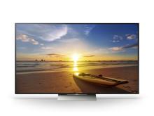 Sony 4K HDR XD93 BRAVIA TV