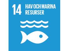 14 hav och marina resurser