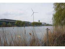 Naturreservat ved Fords fabrik i Dagenham
