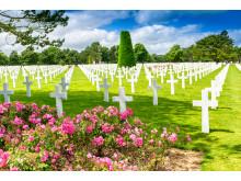 Amerikanske krigskirgegård i Normandie