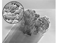 En nanotråd i kraftig uppförstoring.