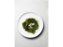 Potatis- och grönkålsgratäng