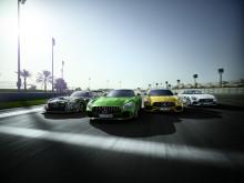 Mercedes-AMG GT-familien