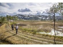 St Olavsleden - Pilgrimage between Skalstugan, Sweden and Sul, Norway