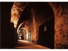 Palmer cellars 3