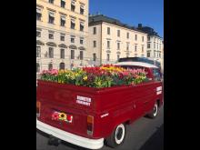 Blomsterfrämjandets Flower truck sprider blomsterglädje