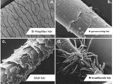 Niophlex - styrker håret