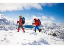 Snöskovandring - guidad topptur med snöskor