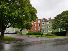 Hjalmar Bergmans väg