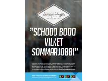 Affischerna på gymnasieskolor i Trollhättan och Vänersborg.