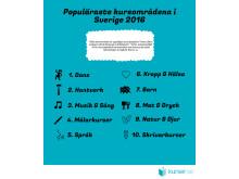 infografik-popularaste-kursomraden