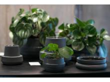 Hinken Flowerpots fra SILJE NESDAL + ANN-K EINARSEN