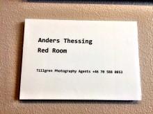 Bildtext till verket Red Room av Anders Thessing