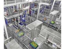 Logistikcenter Witron automation