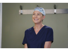Grey's Anatomy, säsong 12.