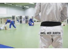Träning med sektionen IKSU kampsport på anläggningen IKSU sport