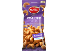 Nutisal Cashews Lightly Salted 60 gram