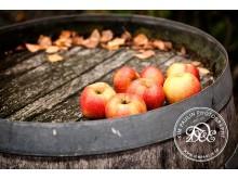 Österlen äpplen