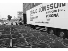lorry bw