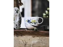 R_Brillance_Fleurs_des_Alpes_Mood02
