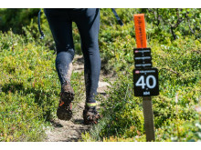 Fjällmaraton 2015 spåret