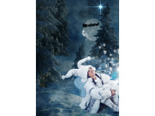 The Christmas Star fairy (Julens Stjärna) (2)